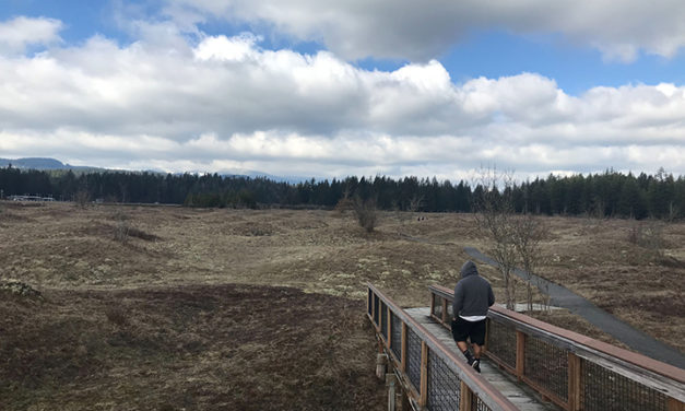 Visiting a Geological Mystery: Mima Mounds in the Spring